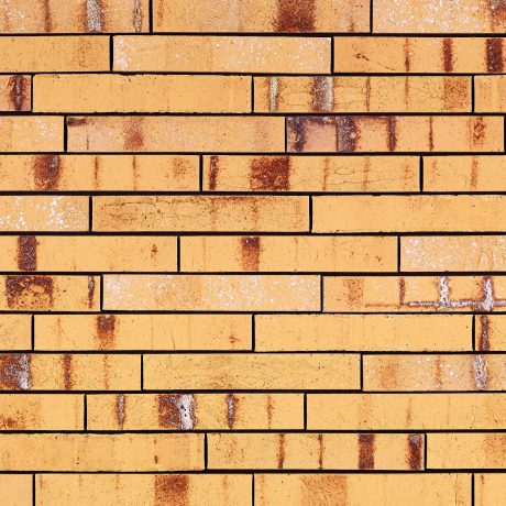 Packshot of a panel with Archipolis Amber Geel facing bricks