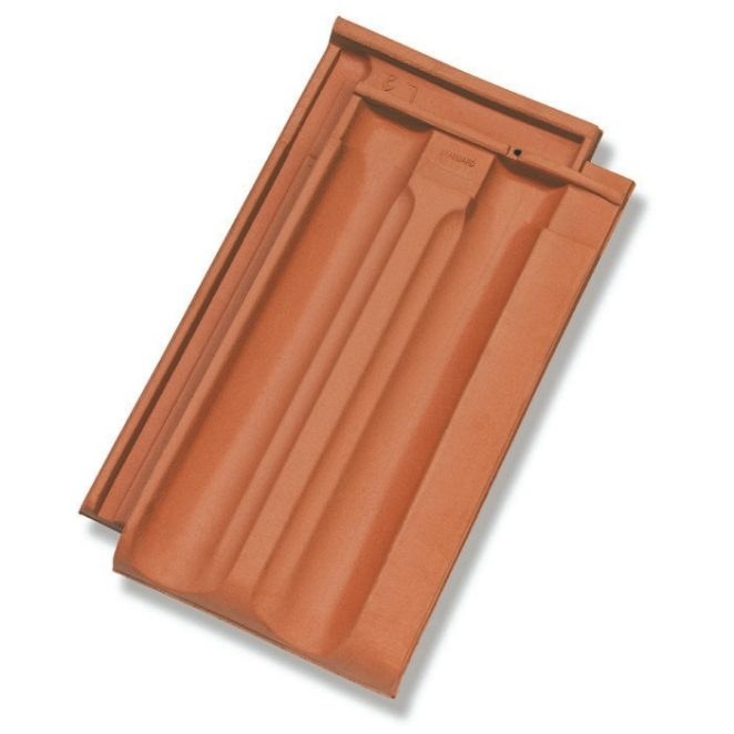Single product shot of a Standard Natuurrood roof tile