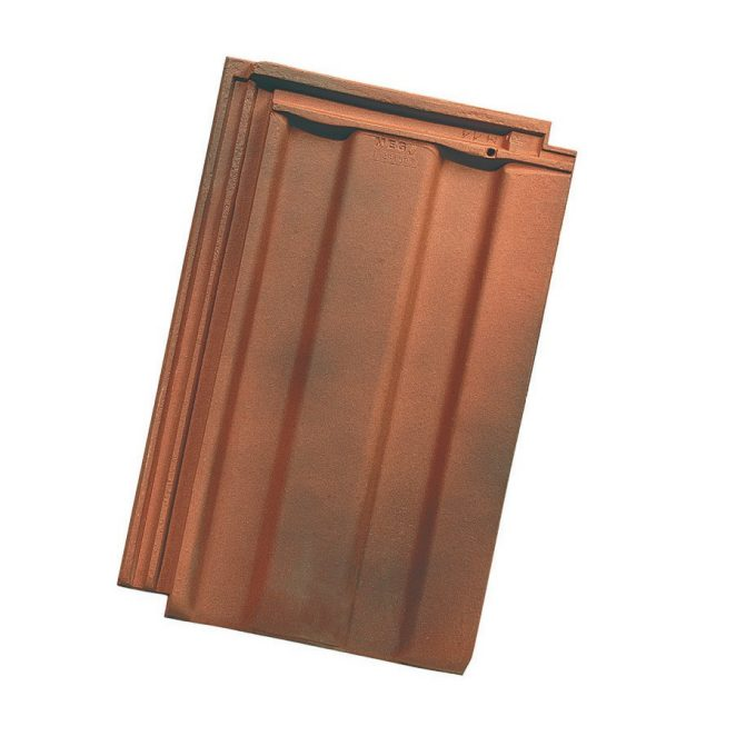 Single product shot of a Mega Gewolkt roof tile