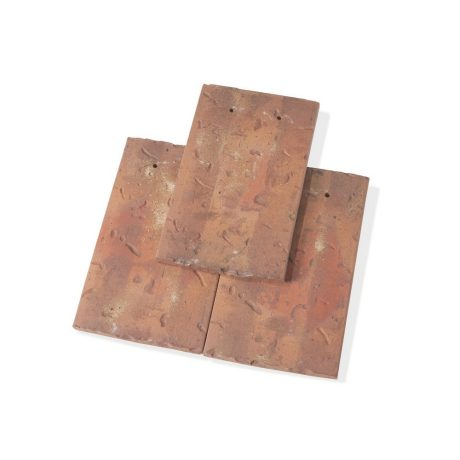 Single product shot of a Tegelpan Aleonard Esprit Patrimoine Ocre Lichen roof tile